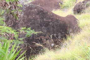 Luahiwa Petroglyphs 11
