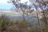 Munro Trail 15