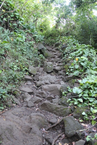 The start of the trail..the first half mile is all uphill on these boulders.