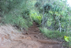 Hanakapi'ai Falls Trail 3