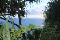 Hanakapi'ai Falls Trail 14