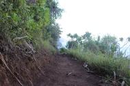 Hanakapi'ai Falls Trail 16