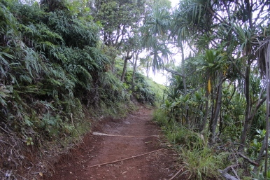 Hanakapi'ai Falls Trail 19