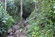 Hanakapi'ai Falls Trail 23