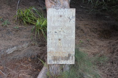 We took a picture of this sign on the way back from our hike last time. It marks the number of people who have lost their lives at the beach.