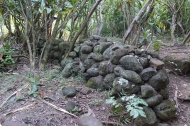 An old wall at the beginning of the trail.