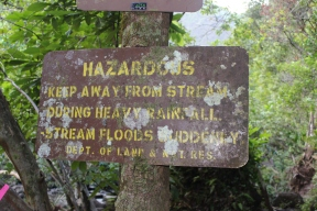 Hanakapi'ai Falls Trail 43