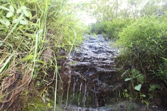 Hanakapi'ai Falls Trail 46