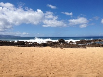Shark's Cove Beach Day 2