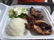 Josh's chicken plate.