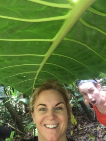 Standing under the taro leaf