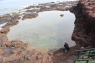 Decided to stop and explore the tide pools.